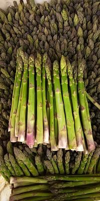 这是一张关于绿芦笋 20cm以上 5mm以上的产品图片
