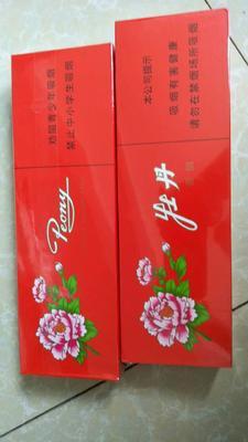 广西壮族自治区防城港市防城区烟绒紫 2cm以下 4cm以下 0.5米以下