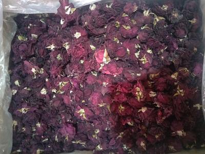 云南省文山壮族苗族自治州文山市玫瑰花茶 散装 特级