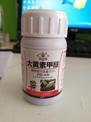 河南省郑州市金水区植物活力素