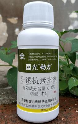 湖南省岳阳市华容县国光诱抗素200毫升 水剂 瓶装