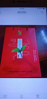 广西壮族自治区贺州市昭平县山楂花茶 礼盒装 特级