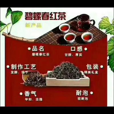 江苏省苏州市吴中区碧螺红茶 礼盒装 三级