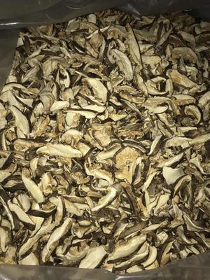 甘肃省张掖市山丹县香菇丝 散装 1年以上
