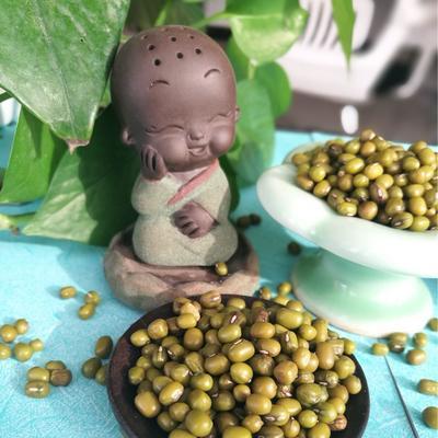 天津滨海新区进口绿豆 袋装 1等品