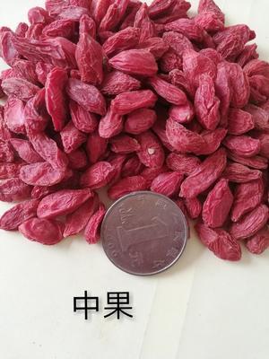 青海省海西蒙古族藏族自治州格尔木市红枸杞 特优级