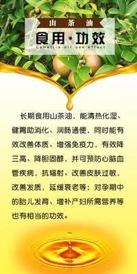 广西壮族自治区梧州市藤县野生山茶油 500ml