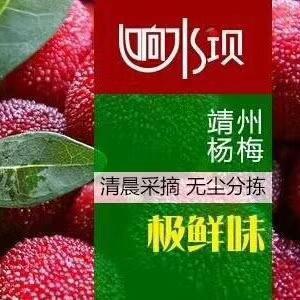 湖南省怀化市靖州苗族侗族自治县靖州杨梅 2 - 2.5cm