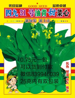 广东省广州市越秀区甜菜心种子