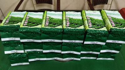 广东省惠州市博罗县柏塘山茶 袋装 一级