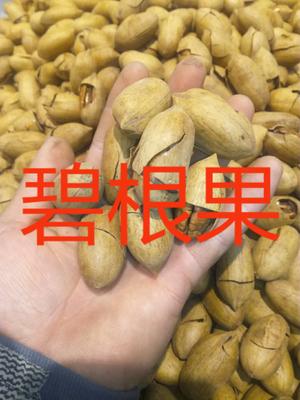 浙江省杭州市临安市碧根果 3-6个月 包装