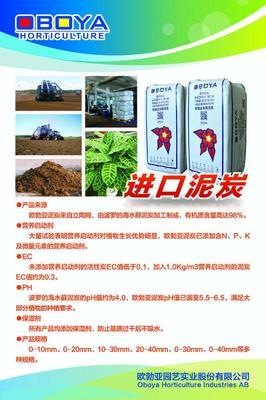 湖北省武汉市新洲区泥炭土