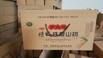 河南省焦作市温县垆土铁棍山药 30~40cm