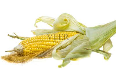 安徽省亳州市涡阳县玉米干粮 霉变≤2% 毛货