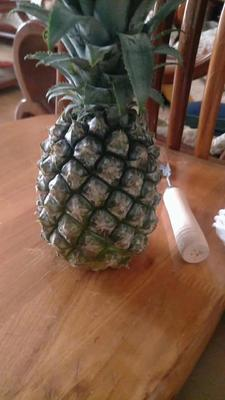 云南省昆明市官渡区泰国小菠萝 1 - 1.5斤
