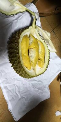 这是一张关于猫山王榴莲 90%以上 2公斤以下的产品图片