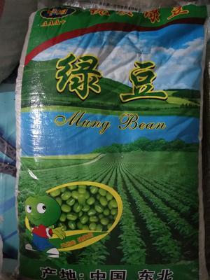 湖南省长沙市望城县东北绿豆 袋装 1等品