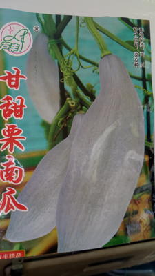 新疆维吾尔自治区阿勒泰地区阿勒泰市板栗南瓜 2~4斤 扁圆形