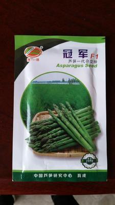 山东省潍坊市寿光市芦笋种子