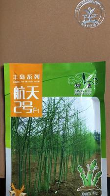 北京东城区芦笋种子