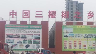 河南省商丘市柘城县三樱椒 2~5cm 红色 中辣