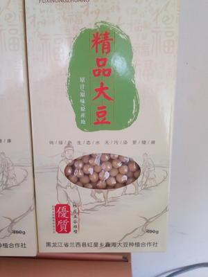 黑龙江省绥化市兰西县绥农14 生大豆 1等品