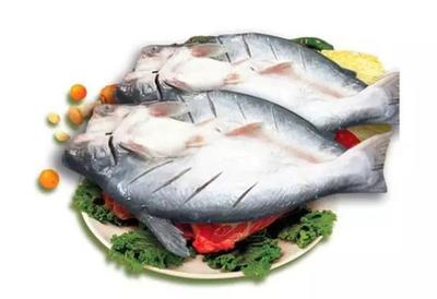 这是一张关于巴沙鱼 人工养殖 1.5-2.5公斤的产品图片