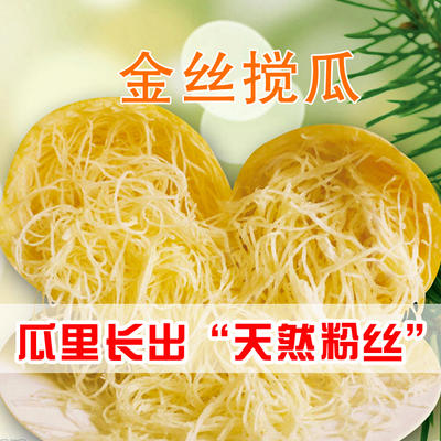 江西省赣州市信丰县中蔓 3-4斤