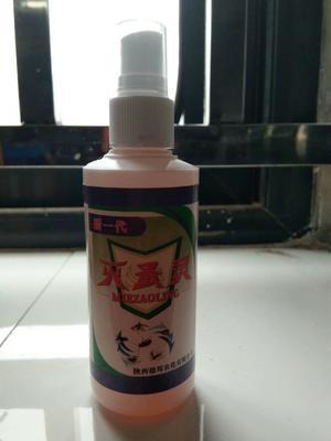 上海闵行区灭蚤灵