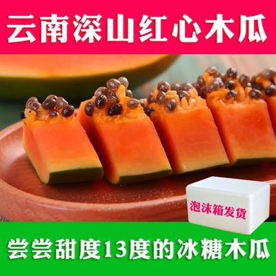 云南省昆明市东川区红心木瓜 0.5 - 1斤