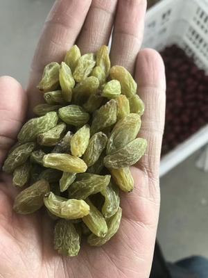 新疆维吾尔自治区吐鲁番地区鄯善县无核白葡萄干 优等
