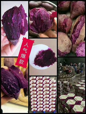 广西壮族自治区崇左市大新县越南紫薯 2两以下