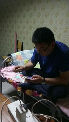 河南省郑州市惠济区黄河鲤鱼 野生 1-1.5龙8国际官网官方网站
