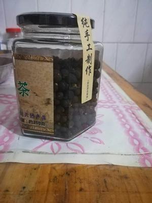 广东省佛山市南海区新会柑胎