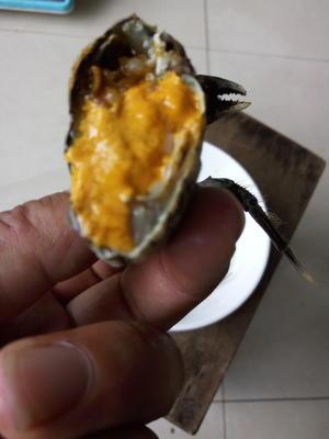 兴化大闸蟹 2.5两 母蟹
