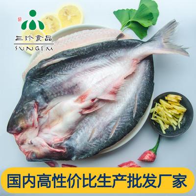 安徽省合肥市巢湖市巴沙鱼 人工养殖 1-1.5公斤