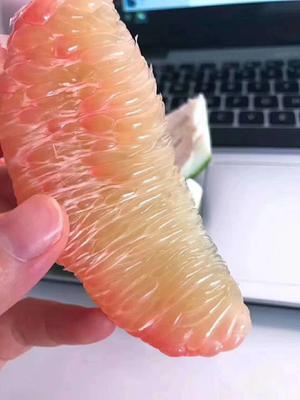 广西壮族自治区钦州市灵山县泰国青柚 2斤以上