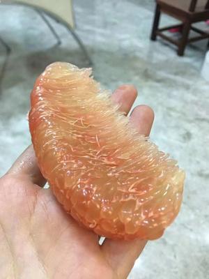 广西壮族自治区崇左市凭祥市金柚 1.5斤以上