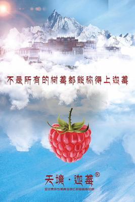 青海省西宁市城北区红树莓 冻果