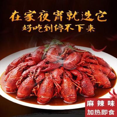 湖北省荆州市洪湖市洪湖熟食麻辣小龙虾 2-3个月