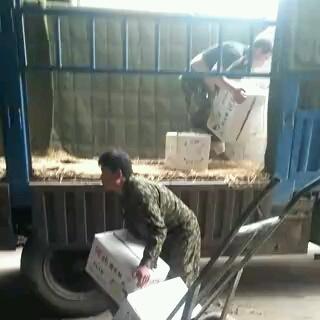 河北省石家庄市赵县雪花梨 300-350g 75mm以上