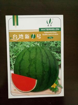 台湾新一号西瓜种子