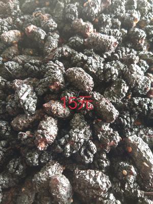 新疆维吾尔自治区吐鲁番地区吐鲁番市桑甜1号 1 - 2cm