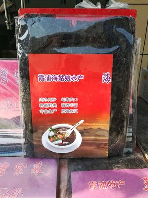 山东省济宁市金乡县霞浦紫菜