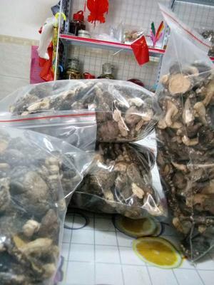 广东省河源市龙川县原木干香菇 散装 1年以上