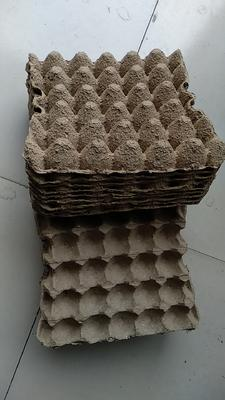 这是一张关于纸蛋托的产品图片
