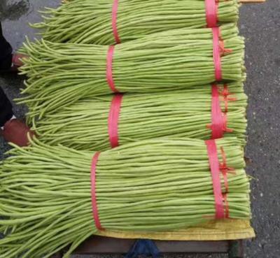 这是一张关于绿翡翠长豆角 80cm以上 不打冷的产品图片