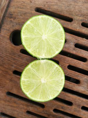 广西壮族自治区北海市合浦县南美无核青柠檬 2 - 2.6两
