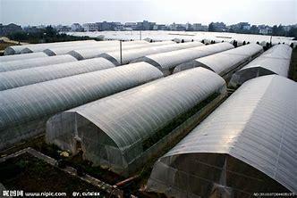 云南省昆明市官渡区钢管大棚