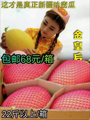 这是一张关于黄蛋哈密瓜 5斤以上的产品图片
